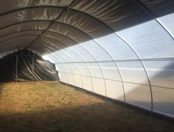 Применение полиэтиленовой пленки в фермерском хозяйстве